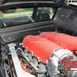 F430 carbonio motore