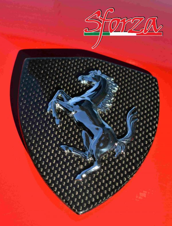 Ferrari 488 Carbon Front fender shield emblem