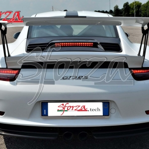 Porsche 911 991.1 GT3 RS Carbon Sforza rear view